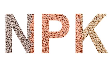 NPK letters made of mineral fertilizers background. N - nitrogen, P - phosphorus, K - potassium (kalium)