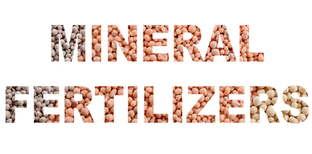 Words MINERAL FERTILIZERS made of mineral fertilizers background closeup