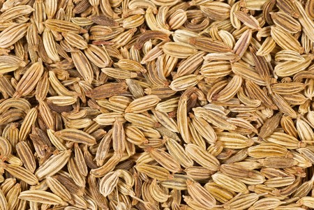 fennel seeds: Detail of fennel seeds, a food background