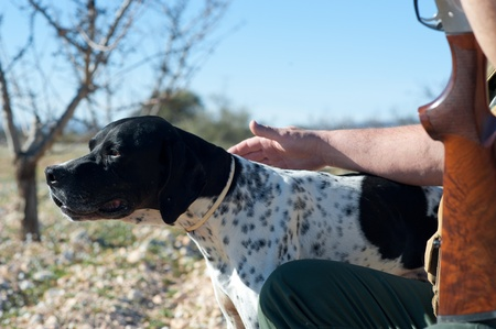 upland: A hunter and his dog, a strong parntership