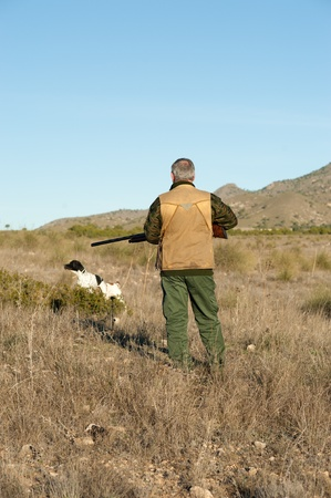 Hunter and pointer dog watching out for the prey photo