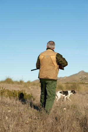 Hunter and pointer dog watching out for the prey