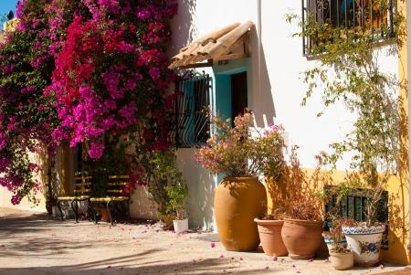 spanish village: Mediterranean village street with flowering bougainvillea bushes