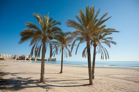 Placid Muchavista resort beach, Costa Blanca, Spain