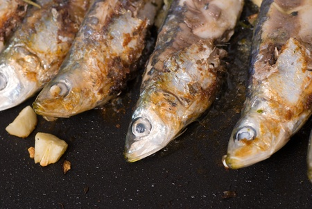bluefish: Roasting bluefish on a griddle, healthy cooking