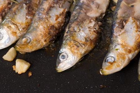 bakplaat: Roosteren bluefish op een bakplaat, gezond koken Stockfoto