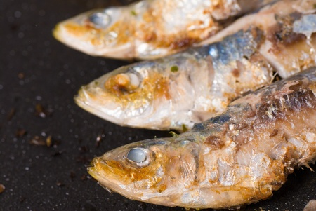 bluefish: Closeup of sardines being cooked on a griddle