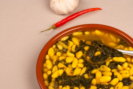 Vegetarian bean stew with fresh spinach leaves photo