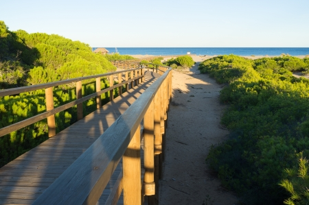 stilted: Carabassi beach amidst a natural park, Costa Blanca, Spain