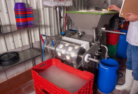Temperature control during fresh cheese production photo