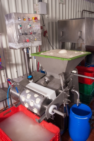 Processing fresh mozzarella cheese in a small plant photo