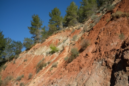 deforested: The effects of erosion on deforested soil