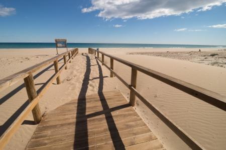 invading: Nature taking over, dunes invading a coastal walkway