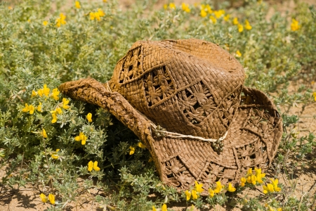 dyllic: Classic straw hat in a  spring flower bed