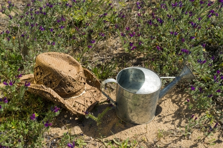 Hat and watering can in  spring surroundings photo