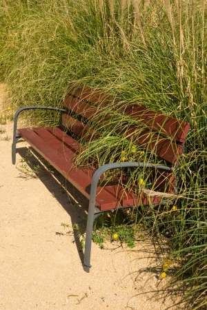 underbrush: Decay sympolized with an overgrown park bench Stock Photo