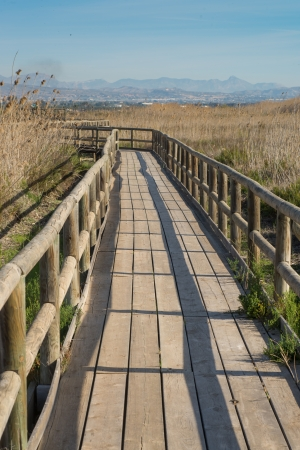 hondo: Footbridge leading over marshy land in a natural park