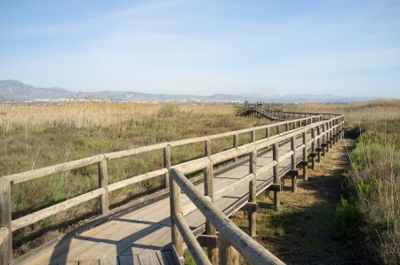 hondo: Footbrige leading across protected  wetlands in a natural park Stock Photo