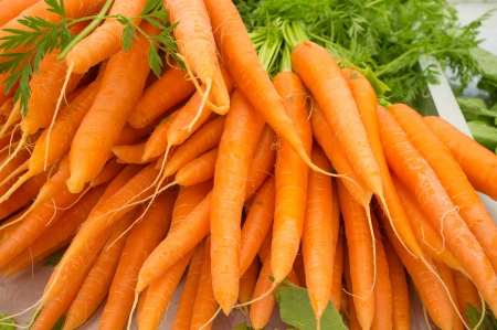 Bunches of carrots on sale on a street market photo