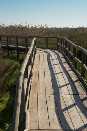 hondo: Footbridge leading over marshland in a natural park