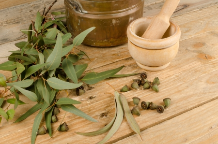 Still life displaying eucalyptus as a natural medicine ingredient
