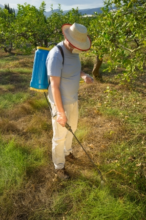 Agricultural worker spraying a weed killing product on the ground photo