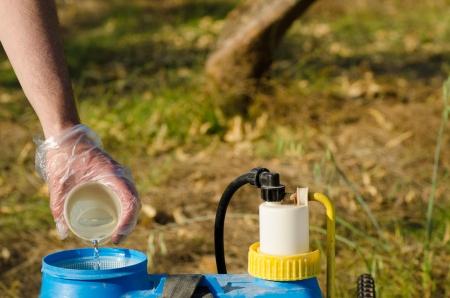 Hand with plastic glove filling pesticide into a garden sprayer Stockfoto