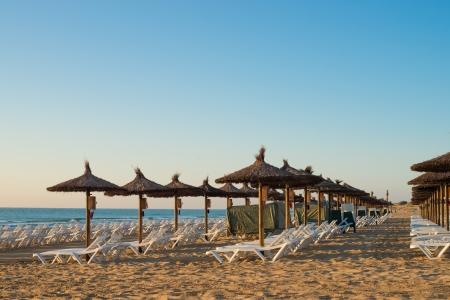 sunshades: Sunshades early morning on Carabassi beach, Costa Blanca, Spain