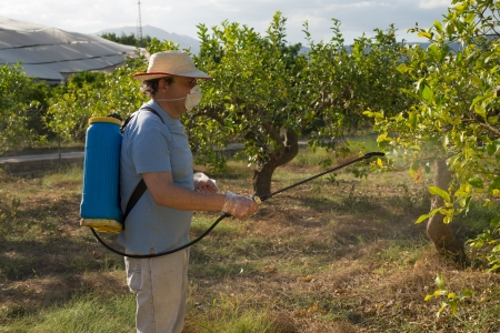 crop sprayer: Agricultural worker spraying pesticide on fruit trees Stock Photo