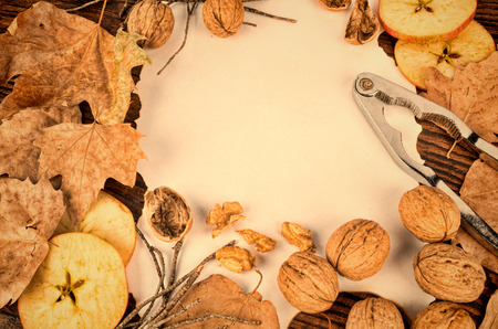 Autumn still life with walnuts and apple slices photo