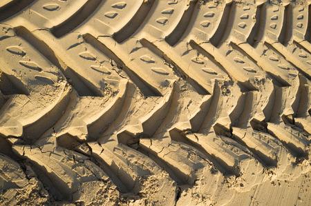 imprinted: Huge tyre tracks  imprinted in beach sand