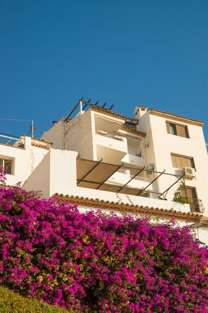 whitewashed: Whitewashed houses and flowering bougainvillea, Mediterranean charm Stock Photo