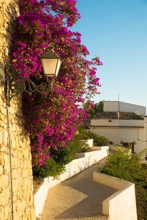 altea: Narrow street of idyllic Altea old town, Costa Blanca, Spain