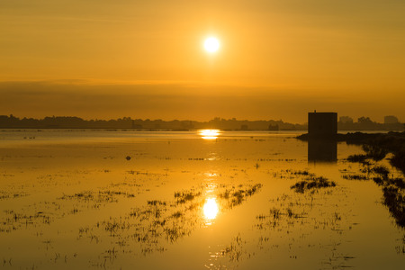 watered: Sunrise on  a landscape of flooded rice paddies