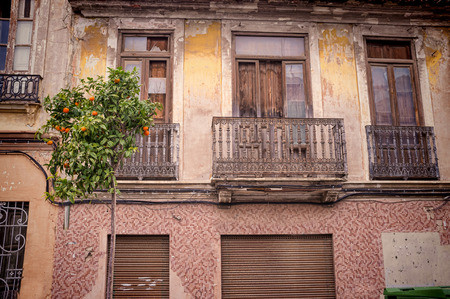 valencia orange: Old houses and ornamental orange trees in Valencia Cabanyal district