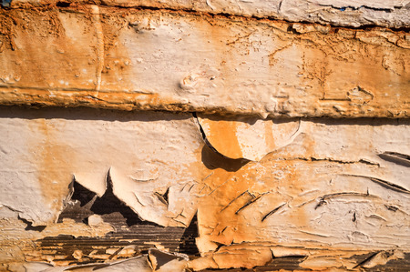 rotting: Full frame take of peeling paint on rotting ship planks