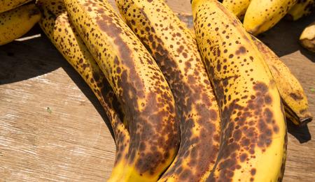 overripe: Bunch of overripe bananas starting to rot