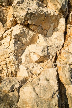 geological feature: Full frame take of the texture of a limestone rock