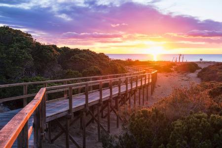 forested: Sunrise on pine forested Santa Pola beach, Costa Blanca, Spain Stock Photo