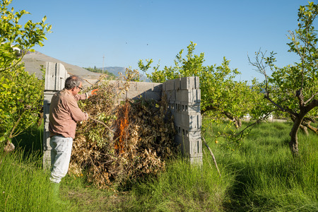 waste prevention: Agricultural worker setting fire to pruned branches inside a burner made of concrete blocks