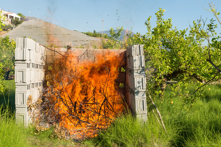 waste prevention: Pruned branches being burnt on a lemon plantation