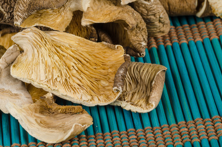 gilled: Dehydrated oyster mushrooms on a traditional bamboo mat