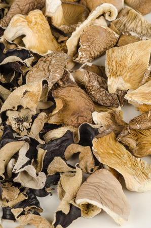 gilled: Ful lfrmae take of an assortment of dehydrated mushrooms