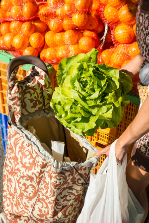 pull along: Female hands; putting a fresh lettuce into a pull along shopping trolley Stock Photo