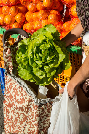 shopping trolley: Female hands; putting a fresh lettuce into a pull along shopping trolley Stock Photo