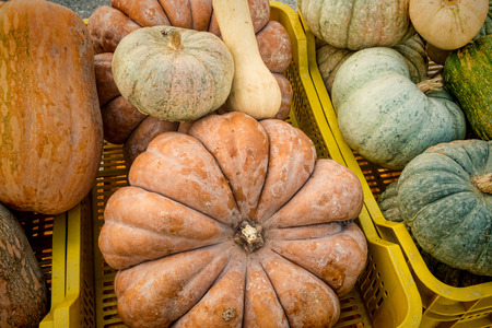street market: Assorted pumpkins of different shapes on a street market stall. Stock Photo