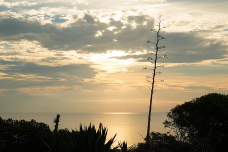 costa blanca: Mediterranean sunrise on idyllic Costa Blanca, Spain Stock Photo