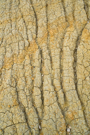 deforested: Heavily textured terrain due to erosion