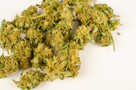 bud weed: Heap of homegrown cannabis buds  isolated on white Stock Photo