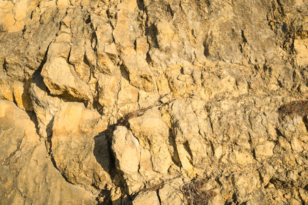 geological feature: Full frame take of a limestone rock texture